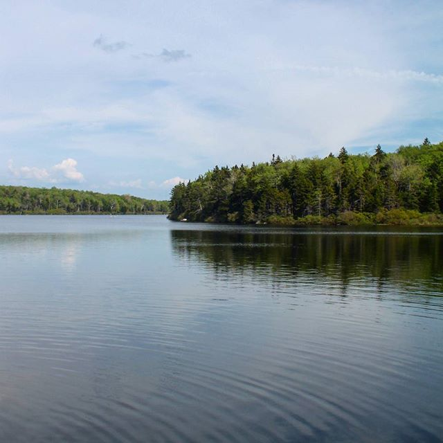 Photo: Grout Pond